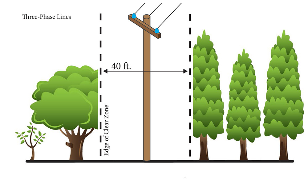 A graphic indicating that Three-Phase Lines need 40 feet of Clear Zone.